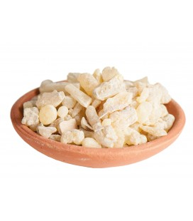 Encens en grains India Boswellia serrata 10 gr
