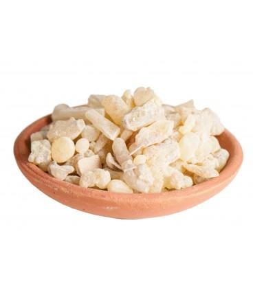 Encens en grains India Boswellia serrata 10 gr