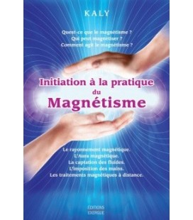 Initiation à la pratique du magnétisme